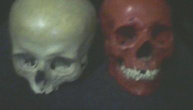 Два черепа за 4 500 рублей! Как жительница Севастополя продавала останки воинов ВОВ