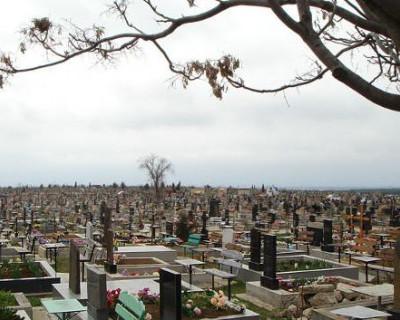 Севастопольцы требуют автобуса до кладбища
