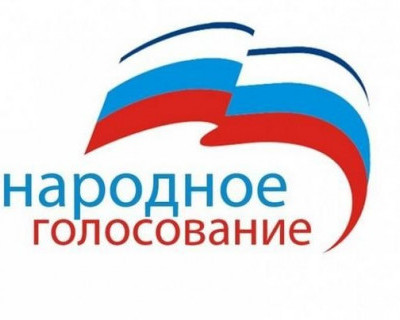 Севастопольцев призывают принять участие в народном голосовании и выбрать своего губернатора!