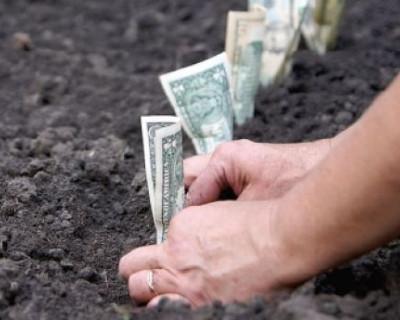 Стоимость земли в Крыму уже сопоставима с ценами в соседнем Краснодарском крае