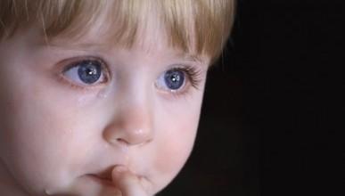 Несовершенство местного законодательства существенно ухудшает положение детей Севастополя