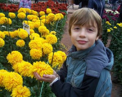 Севастопольские врачи становятся для малышей «капсулами смерти»?