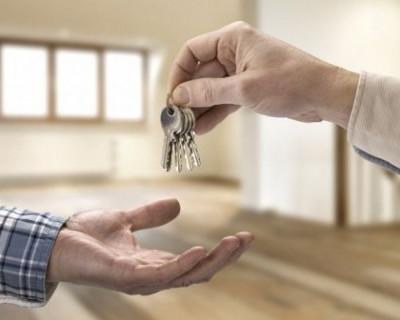 Сколько севастопольцев сдают недвижимость в аренду официально?