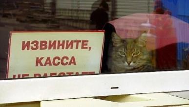 24 банка в Крыму остались без имущества. Или здесь вам не тут!