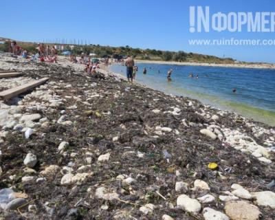 Легендарный пляж «Адмиральская лагуна» в Севастополе без купюр: мусор, испражнения, смрад