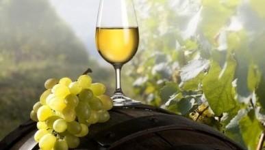 В Севастополе пройдёт парад достижений крымских виноделов - запасайтесь бокалами