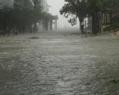 Рыбы стали хозяевами на затопленных ураганом «Ирма» улицах Флориды