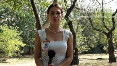 Севастопольцы рассказали «ИНФОРМЕРу» о том, как сохранить парк 60-летия СССР и получить новый садик