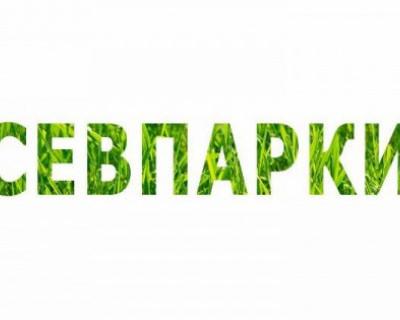 Севастопольские цыгане... Или  странный местный «коллектив»