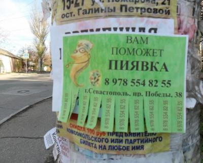 Севастопольцы хватаются за головы: «Вместо депутата поможет пиявка, она же временно зарегистрирует?»