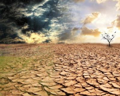 Правительство Севастополя собралось спасать два села от засухи