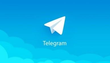 У движения PutinTeam появился бот в Telegram