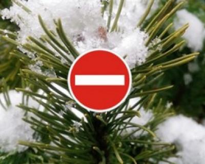 В Севастополе на новогодние праздники ограничат движение и стоянку транспорта (АДРЕСА, ДАТЫ, ВРЕМЯ)