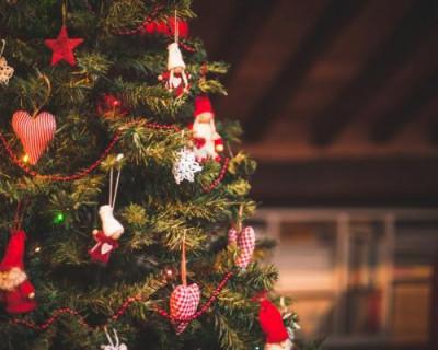 Где и когда в Севастополе откроются новогодние ёлки (адреса)