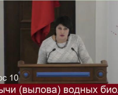 «Я напишу заявление в Следственный комитет!» Зампредседателю ЗакСобрания Севастополя пригрозили органами