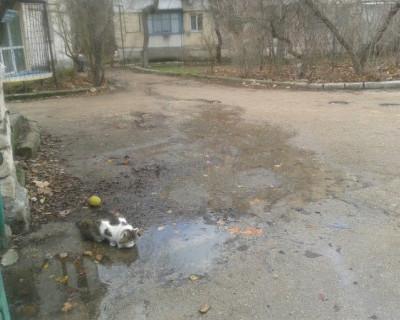 В Стрелецкой бухте скоро будет озеро из чистейшей водопроводной воды