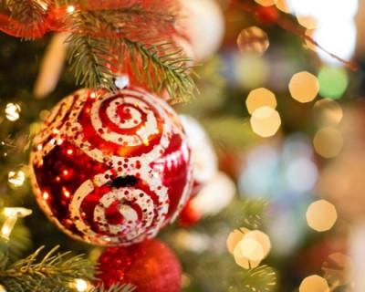 Самые культурные люди Севастополя поздравляют с Новым годом!