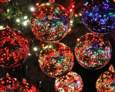 С какими ёлками севастопольцы встречали Новый год (ПРАЗДНИЧНЫЕ ФОТО)