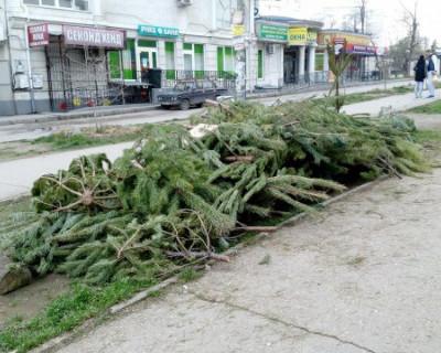 Постновогоднее городское похмелье в Севастополе: отпраздновали и хватит (ФОТО)