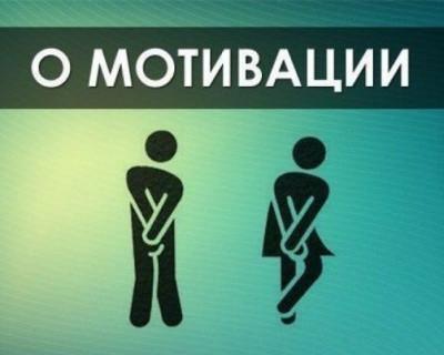 В какой момент в Севастополе появляется быдло?