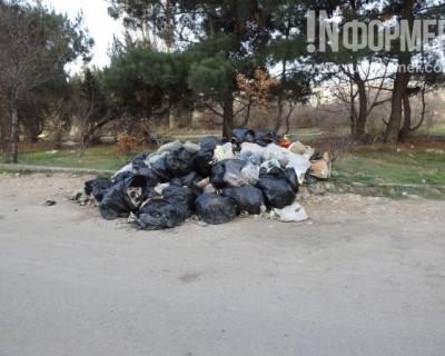 Новогодние праздники ушли, а в Севастополе горы мусора остались (ФОТО)