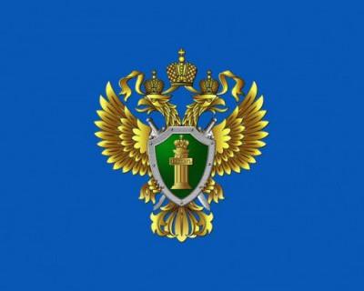 В России отмечается профессиональный праздник работников прокуратуры (ВИДЕО)