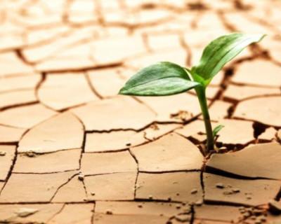 Крым ждёт засуха?