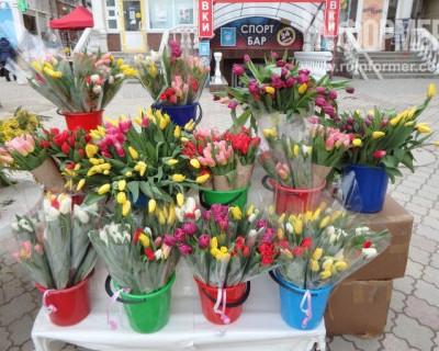Тюльпановая лихорадка в Севастополе!