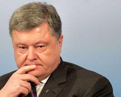 Пётр Алексеевич, пожалейте белочку и не заставляйте её так часто к вам ходить!