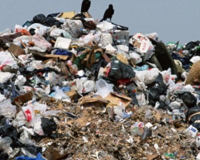 В Севастополе пообещали пересмотреть тариф на мусор