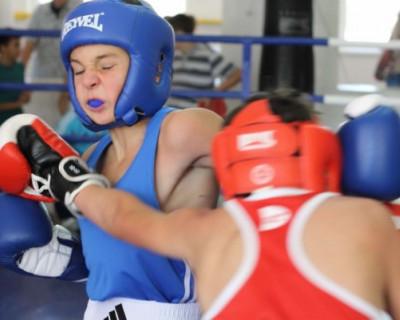 Сильные боксеры Севастополя