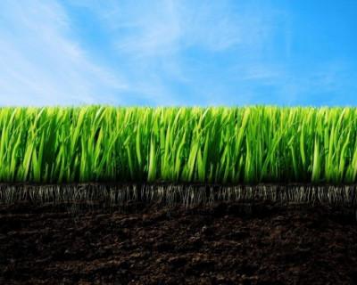 Выделению земли инвесторам – БЫТЬ!