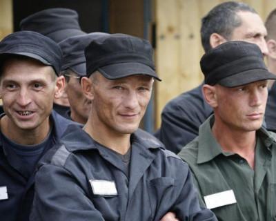 «Наколи мне купола»: в Крыму с космической скоростью растёт преступность