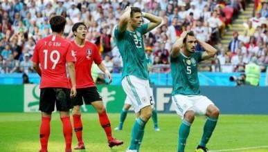 Глава Липецкой администрации дал неожиданную характеристику вылету сборной Германии