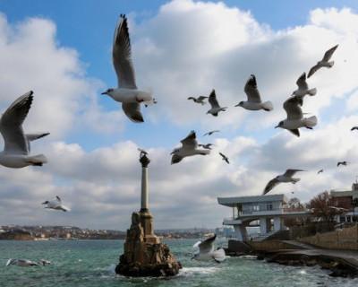 Основные события Севастополя 1-7 июля (ВИДЕО)