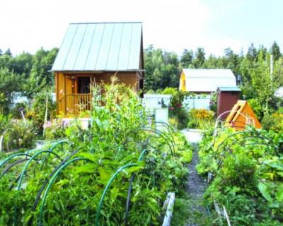 Крымчане смогут прописываться на садовых участках