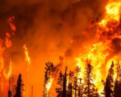 Кадры страшного пожара в Крыму (ФОТО, ВИДЕО)