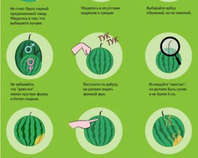 Как правильно выбрать арбуз