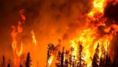 Пожар в горах Крыма