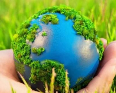 Первые шаги в правильном экологическом воспитании детей и взрослых