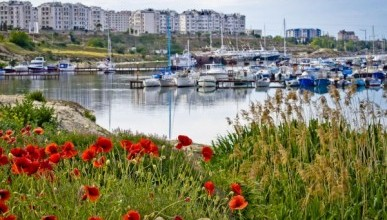 В Севастополе грязный берег стоит 300 тысяч рублей