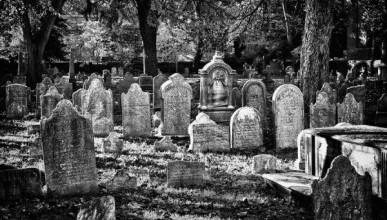 А вдоль севастопольских дорог - мёртвые...