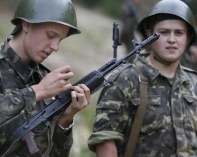 Сами-с-усами мозги не указ: на Украине меняют погоны (ФОТО)