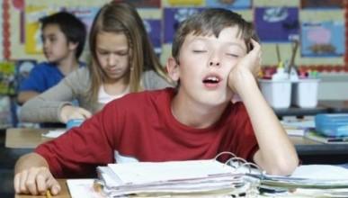 Легализация школьных поборов в Севастополе зависит от депутатов