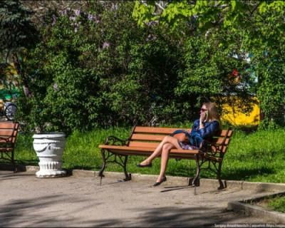 Как озеленят Севастополь?