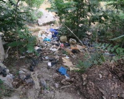 Феодосия «заросла» мусором (ФОТО)