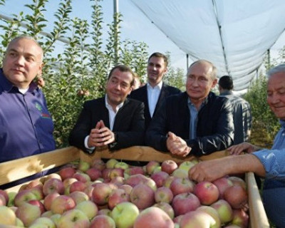 Путин и Медведев «напросились» на обед (ВИДЕО)