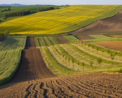 В Севастополе утверждена кадастровая стоимость земельных участков