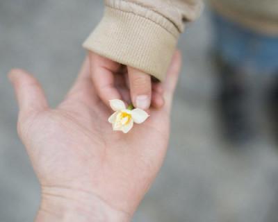 В Севастополе стартовал курс «Школы приемных родителей»