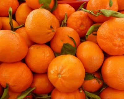 Крымчане обнаружили опасных вредителей в турецких мандаринах и гранатах